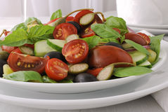 Salad of summer vegetables Royalty Free Stock Images