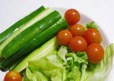 Salad of summer vegetables Royalty Free Stock Photo