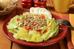 Salad with sunflower seeds and eggs Stock Photo