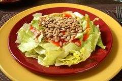 Salad with sunflower seeds Stock Photography