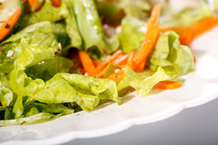 Salad on the table royalty free stock image