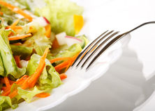 Salad on the table Stock Image