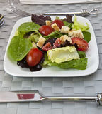 Salad with table setting Royalty Free Stock Photos