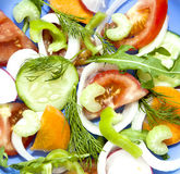 Salad tomato cucumber radish ofoschey carrots celery onion peppe Stock Photography