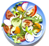 Salad tomato cucumber radish ofoschey carrots celery onions pepp Stock Photo