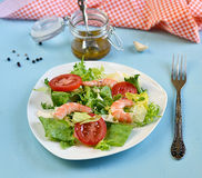 Salad with tomato, king shrimps and sauce vinaigrette. On blue background royalty free stock image