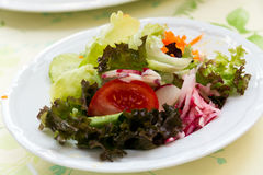 Salad  with tomato, lettuce and carrot Royalty Free Stock Photography
