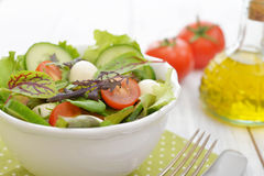 Salad with tomato and mozzarella cheese Royalty Free Stock Photo