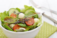Salad with tomato and mozzarella cheese Royalty Free Stock Images