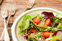 Salad with tomato and radish sprouts for dinner. On a wooden background Stock Photography