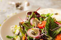 Salad with tomato and radish sprouts for dinner. On a wooden background Royalty Free Stock Photo