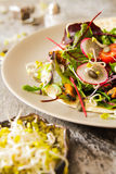 Salad with tomato and radish sprouts for dinner. On a wooden background Royalty Free Stock Photos