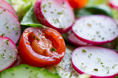 Salad with tomato and Radishes Royalty Free Stock Images