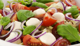 Salad with tomato and red onion Stock Photography