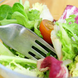 Salad with tomatoe Stock Images
