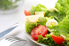 Salad with tomatoes Royalty Free Stock Images