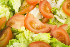Salad and tomatoes Stock Images