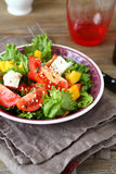 Salad with tomatoes, cheese and greens in a bowl Royalty Free Stock Images