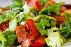 Salad with tomatoes, cucabers and onions. Salad with tomatoes, cucabers, onions, red and green peppers and olive oil, close up Stock Photos