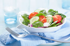 Salad with tomatoes cucumber and goat cheese Royalty Free Stock Photos