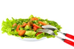 Salad of tomatoes, cucumbers and dill on lettuce leaves with a spoon fork Stock Images