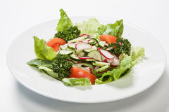 Salad with tomatoes and cucumbers, radishes on the plate.  Stock Image