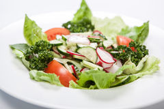 Salad with tomatoes and cucumbers, radishes on the plate.  Stock Photography