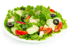 Salad with tomatoes, cucumbers and radishes. On a white plate Royalty Free Stock Photography