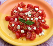 Salad of tomatoes Stock Photography
