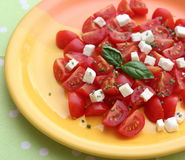 Salad of tomatoes Stock Photos