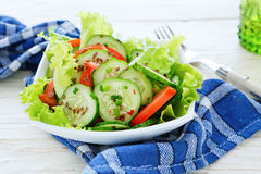 Salad with tomatoes Stock Photography
