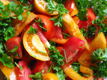 Salad from tomatoes and greens Royalty Free Stock Images