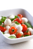 Salad with tomatoes and mozarella Stock Photography