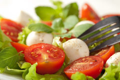Salad with tomatoes and mozzarella Stock Images