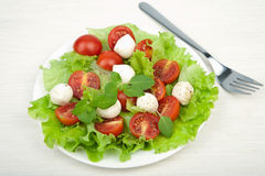 Salad with tomatoes and mozzarella Stock Photos