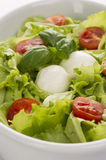 Salad with tomatoes and mozzarella 2. Salad with tomatoes and mozzarella closeup. White plate Royalty Free Stock Images