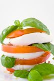 Salad of tomatoes and mozzarella Royalty Free Stock Photography