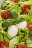 Salad with tomatoes and mozzarella. Closeup Royalty Free Stock Photos
