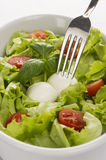 Salad with tomatoes and mozzarella with fork 2. Salad with tomatoes and mozzarella closeup. White deep plate from the top Stock Photo