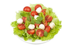 Salad with tomatoes and mozzarella isolated Stock Images