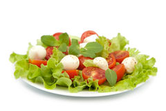 Salad with tomatoes and mozzarella isolated Royalty Free Stock Images