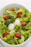 Salad with tomatoes and mozzarella from the top. Salad with tomatoes and mozzarella closeup. White deep plate from the top Royalty Free Stock Photos