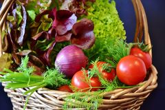 Salad, Tomatoes, Onion, Dill Royalty Free Stock Image