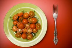 Salad with tomatoes on the plate Royalty Free Stock Photos