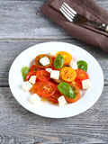 Salad with tomatoes and slices of cheese Stock Photos