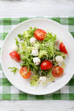 Salad with tomatoes on white plate. Top view Stock Images