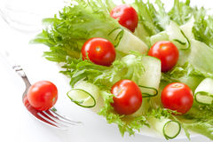 Salad Stock Photography