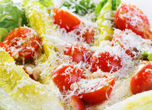 Salad with tomatos and parmesan Royalty Free Stock Image