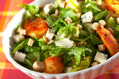 Salad with tomatos, tuna fish and croutons Royalty Free Stock Photography
