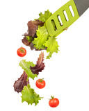 Salad Tongs. Lettuce leaves in salad tongs with falling tomatoes stock photography
